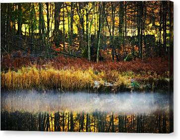 Mist On The Water Canvas Print by Meirion Matthias