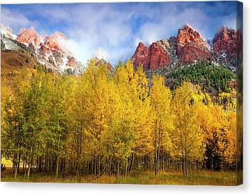 Misty Autumn Morning Canvas Print by Andrew Soundarajan