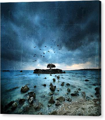 Misty Blue Canvas Print by Philippe Sainte-Laudy
