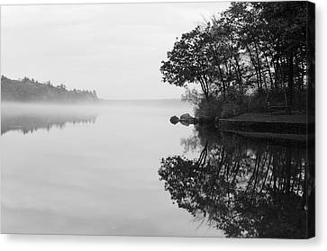 Misty Cove Canvas Print by Luke Moore