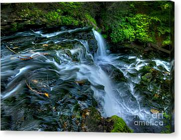 Misty Falls - 2976 Canvas Print by Paul W Faust -  Impressions of Light