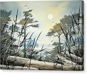 Misty Island Dawn Canvas Print by James Williamson