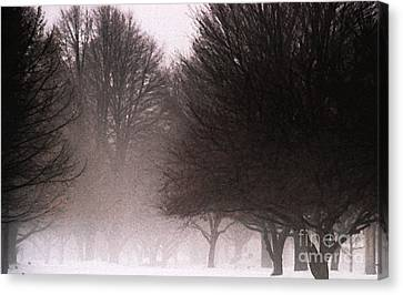 Misty Canvas Print by Linda Knorr Shafer