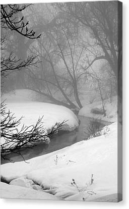 Misty Morning Canvas Print by Julie Lueders