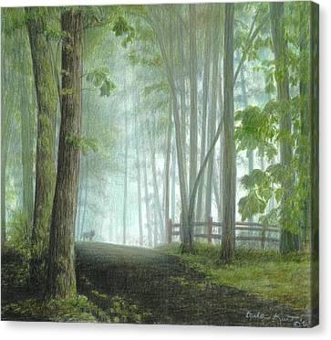 Misty Morning Visitor Canvas Print by Carla Kurt