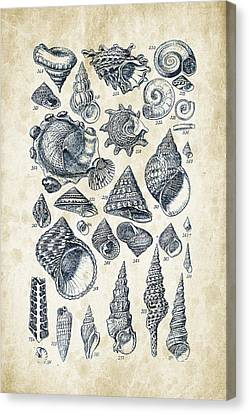 Mollusks - 1842 - 16 Canvas Print by Aged Pixel