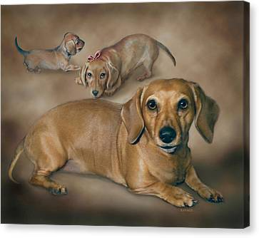 Molly Canvas Print by Barbara Hymer