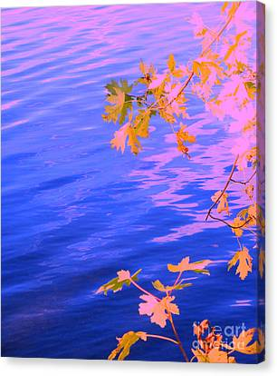 Moment Of Quiet Canvas Print by Sybil Staples