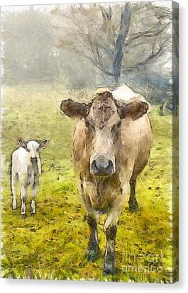 Momma And Baby Cow Pencil Canvas Print by Edward Fielding