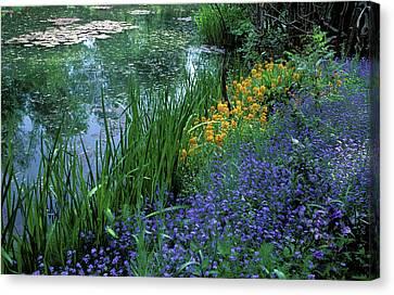 Monet's Lily Pond Canvas Print by Kathy Yates