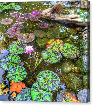 Monet's Pond At The Fair Canvas Print by Jame Hayes
