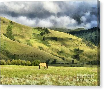 Montana Ranch Landscape Canvas Print by Edward Fielding