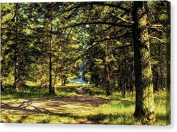 Montana Scenery Canvas Print by Thomas Woolworth