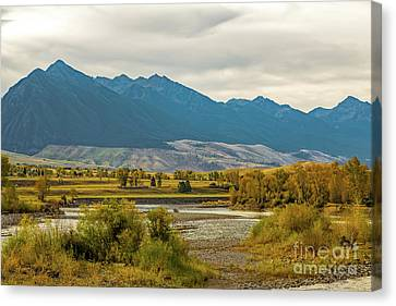 Montana Yellowstone River View Canvas Print by Jon Burch Photography