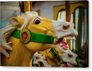 Moody  Carrousel Horse Canvas Print by Garry Gay