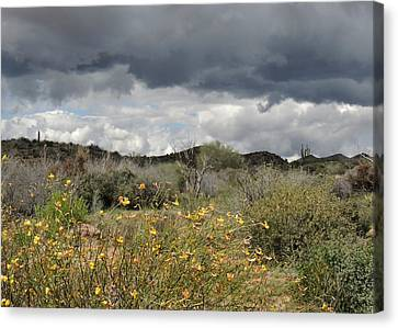 Moody Skies Canvas Print by Gordon Beck