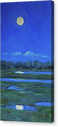 Moon Light And Mud Puddles Canvas Print by Billie Colson