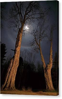 Moonlight Sentinels Canvas Print by Jerry LoFaro