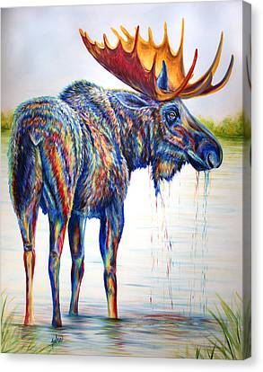 Moose Sighting Canvas Print by Teshia Art