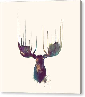 Moose // Squared Format Canvas Print by Amy Hamilton