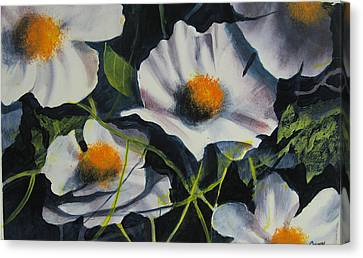 More Poppies Canvas Print by Robert Carver