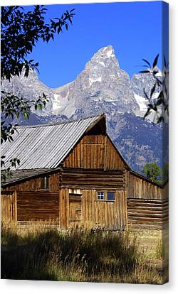 Mormon Row Barn  1 Canvas Print by Marty Koch