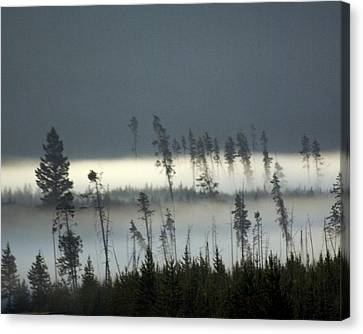 Morning Along The Madison Canvas Print by Marty Koch