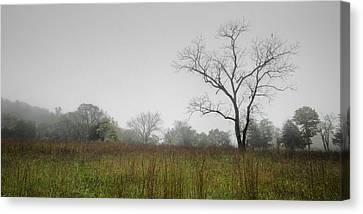 Morning Fog Canvas Print by Ryan Heffron