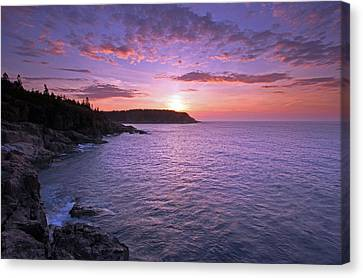 Morning Glory Canvas Print by Juergen Roth