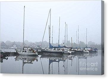 Morning In The Harbor Canvas Print by Stefan Kuhn