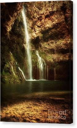 Morning Light At Dripping Springs II Canvas Print by Tamyra Ayles