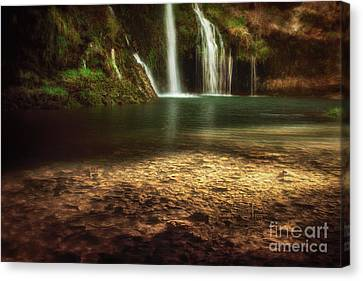 Morning Light At Dripping Springs Canvas Print by Tamyra Ayles