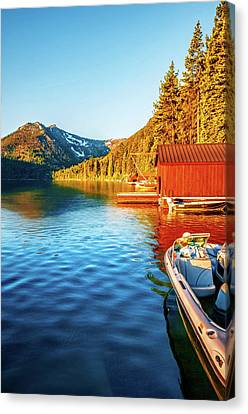 Morning Light Canvas Print by Maria Coulson