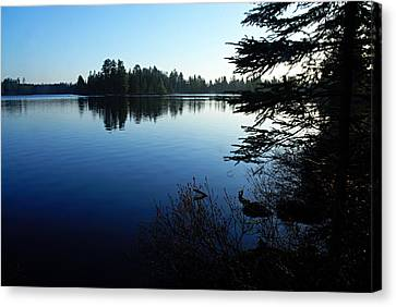 Morning On Chad Lake Canvas Print by Larry Ricker