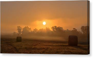 Morning On The Farm Canvas Print by Ron  McGinnis