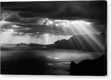 Morning Rays Canvas Print by Andre Gehrmann