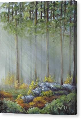 Morning Rays Canvas Print by Debra Davies