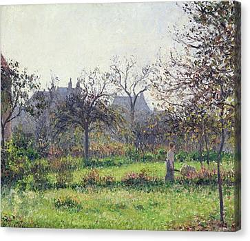 Morning Sun Canvas Print by Camille Pissarro