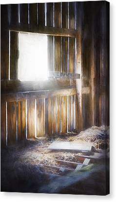 Morning Sun In The Barn Canvas Print by Scott Norris