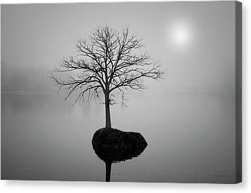 Morning Tranquility Canvas Print by Dave Gordon