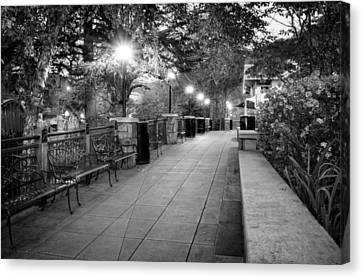 Morning Walk In Gatlinburg Tennessee In Black And White Canvas Print by Greg Mimbs