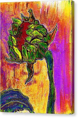 Mornings Glow Canvas Print by Wayne Potrafka