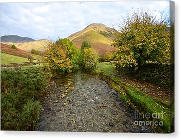 Mosedale Beck Canvas Print by Stephen Smith