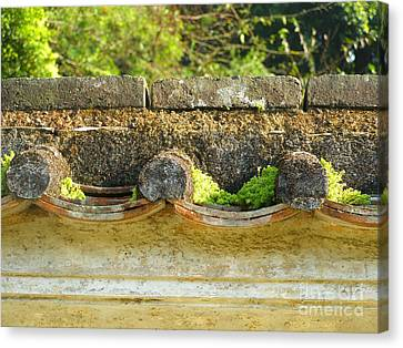Moss On An Old Chinese Roof Canvas Print by Kathy Daxon