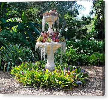 Mossy Fountain With Bromeliads Canvas Print by Carol Groenen