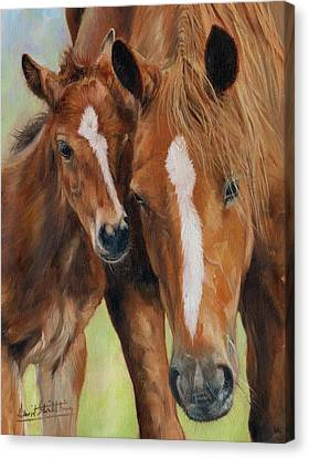 Mother Love Canvas Print by David Stribbling