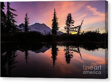 Mount Baker Sunrise Reflection Canvas Print by Mike Reid