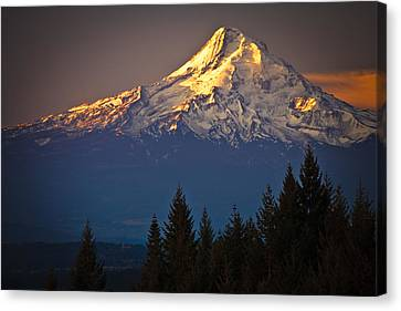 Mount Hood From The North Canvas Print by Ed Book