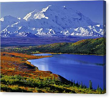 Mount Mckinley And Wonder Lake Campground In The Fall Canvas Print by Tim Rayburn