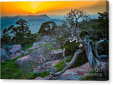 Mount Scott Sunset Canvas Print by Inge Johnsson